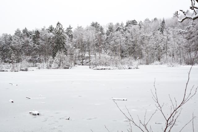 vinter-IMG_5765