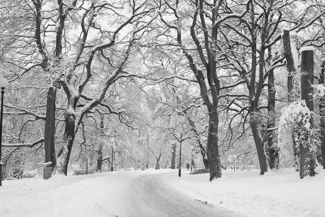 snöig-väg-sv